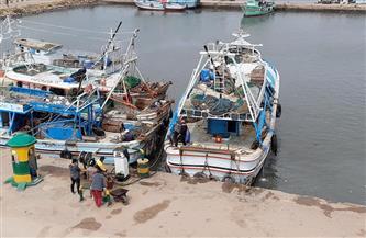 استئناف الملاحة بميناء الصيد بالبرلس وانطلاق 180 مركبًا بعد توقف 6 أيام | صور