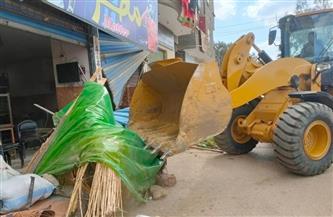 إزالة 311 حالة تعد على نهر النيل بالدقهلية | صور