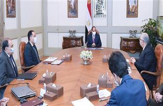 """الرئيس السيسي يوجه بالبدء الفوري في تنفيذ مشروع """"الدلتا الجديدة"""" بمساحة مليون فدان"""