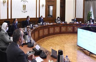 استمرار العمل بعدد من التيسيرات السابقة لدعم قطاع السياحة وعرضها على مجلس الوزراء