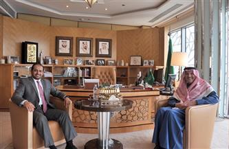 سفير السعودية لدى مصر يستقبل نظيره الإماراتي