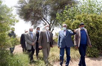 رئيس جامعة أسيوط يتفقد المزرعة الإرشادية ومحاصيل الخضر والفاكهة بمزرعة الغريب | صور