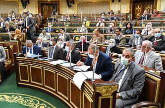 """مجلس النواب يقر """"رسم ري الأراضي الجديدة"""" بحد أقصى 200 ألف جنيه"""