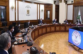 رئيس الوزراء يلتقي رئيسي لجنتي الإدارة المحلية والإسكان بمجلس النواب