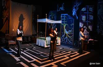 عرض «جنة هنا» على مسرح ليسيه الحرية بالإسكندرية.. الخميس | صور
