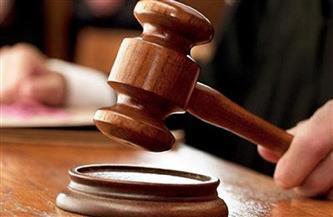 حجز قضية محاكمة أسرة منار سامي فتاة «التيك توك» للنطق بالحكم