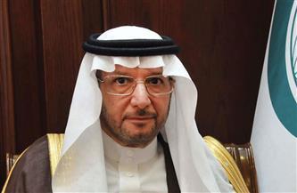 """""""التعاون الإسلامي"""" تدين محاولة استهداف مطار أبها السعودي بطائرة مفخخة"""