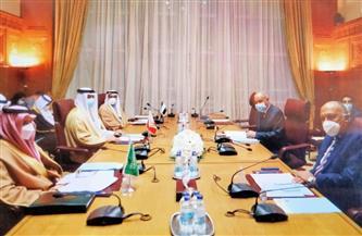شكري يترأس الاجتماع الوزاري لمتابعة التدخلات التركية في الشئون الداخلية للدول العربية