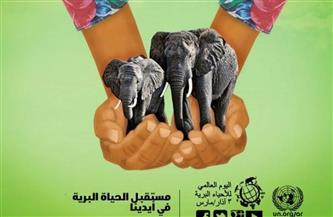 مصر تشارك العالم الاحتفال باليوم العالمي للحياة البرية