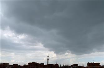المنوفية تشهد موجة من الطقس البارد وسقوطًا خفيفًا للأمطار | صور