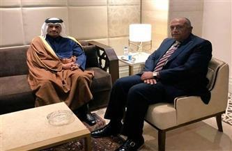 وزير الخارجية يلتقي نظيره القطري على هامش الاجتماعات الوزارية لجامعة الدول العربية