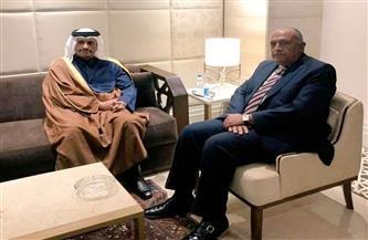 وزير خارجية قطر: حريصون على دعم العلاقات مع مصر ولقائي مع الوزير شكري كان إيجابيًا