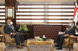 وزير التنمية المحلية يتابع مع محافظ الوادى الجديد المشروعات الجارية لتحسين حياة المواطنين