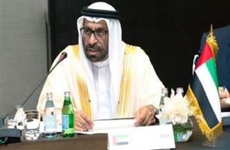 الإمارات تؤكد أن الحل السياسي هو المخرج الوحيد للأزمة السورية