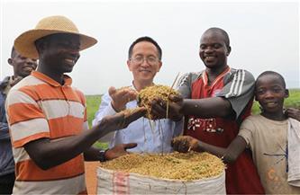 تعليق: الصين تساهم في دفع قضية الحد من الفقر في العالم