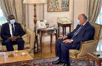 سامح شكري يبحث آفاق التعاون وسُبل تعزيزها مع وزير خارجية جزر القمر | صور