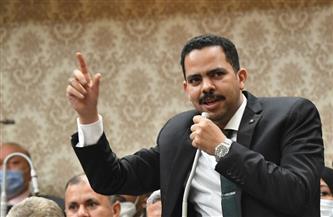 «زعيم الأغلبية» يهنئ العمال بعيدهم الـ٩٧.. أشرف رشاد: عمال مصر أيقونة العطاء والبناء