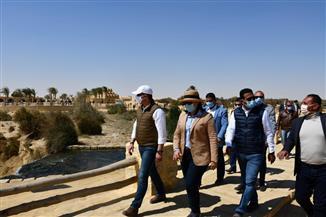 محافظ الفيوم ونائب وزير السياحة والآثار يتفقدان محمية وادي الريان وجبل المدورة | صور