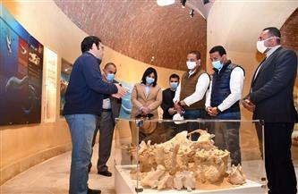 محافظ الفيوم ونائب وزير السياحة يتفقدان متحف الحفريات بوادي الحيتان | صور
