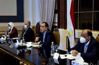 """وزيرة الصناعة: حريصون على أن تكون المكونات المستخدمة في """"حياة كريمة"""" مصرية الصنع"""