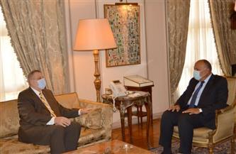 شكري يشدد على التزام كافة الأطراف الليبية بتنفيذ اتفاق وقف إطلاق النار |صور