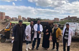 محافظ كفر الشيخ: تحصين 220 ألف رأس ماشية ضد حمى الوادي المتصدع والقلاعية   صور
