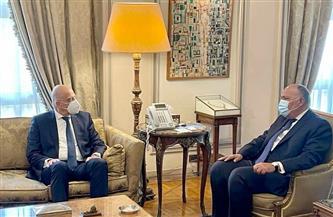 وزير الخارجية يؤكد اهتمام مصر بتيسير تدفق الاستثمارات اليونانية | صور