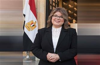 فيبي فوزي: انتخابي وكيلا لمجلس الشيوخ مكتسب جديد للمرأة يحسب للرئيس السيسي