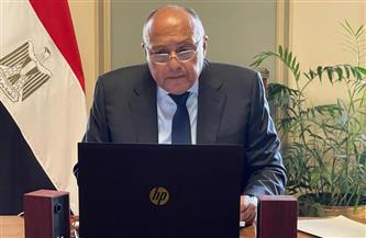 وزير الخارجية يشارك في قمة مجلس السلم والأمن الإفريقي | صور