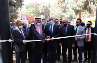افتتاح مهرجان القاهرة الدولي للتمور بمشاركة أكثر من 50 عارضًا | صور