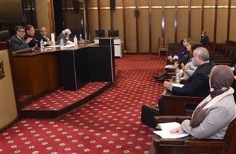 """رئيس """"خطة البرلمان"""": مصر حريصة على تعزيز التعاون وتوطيد العلاقات مع دول القارة الإفريقية"""