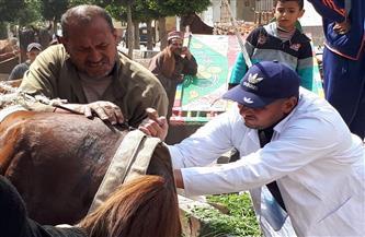 الكشف على 541 رأس ماشية في قافلة بيطرية بقرية الرحامنة في دمياط |صور