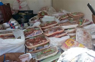 """""""الزراعة"""" ضبط أكثر من 131 طن لحوم ودواجن وأسماك غير صالحة للاستهلاك الآدمي خلال مارس"""