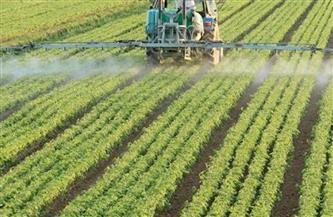 الحكومة: مشروع «الدلتا الجديدة» يستهدف تحقيق الأمن الغذائي