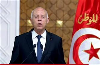 الرئيس التونسي: بحثنا مع الرئيس السيسي المخاطر التى تستهدف الدول والمجتمعات وآليات التصدي لها