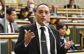 «البياضى» يتقدم بأول بيان عاجل بشأن مد مهلة الإقرارات الضريبية