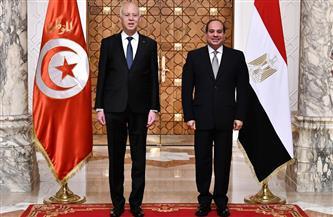 الرئيس السيسي: نثمن الدور الذي تقوم به تونس باعتبارها العضو العربي في مجلس الأمن