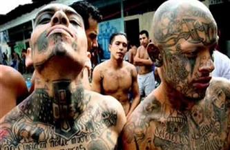 الولايات المتحدة تصدر إنذارا أمنيا بسبب عنف العصابات في المكسيك
