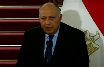 وزير الخارجية: ناقشت مع لافروف استئناف مشاورات 2+2 وإنشاء محطة الضبعة النووية
