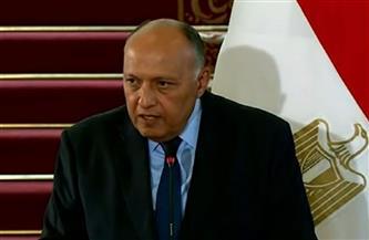 وزير الخارجية: نأمل عودة سوريا لمقعدها بالجامعة العربية