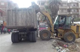 حملات نظافة في قرى مركز شبين الكوم بالمنوفية | صور