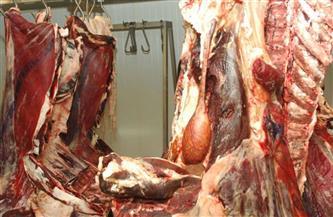 إعدام كمية من اللحوم والأسماك غير صالحة للاستهلاك في حي شرق المنصورة
