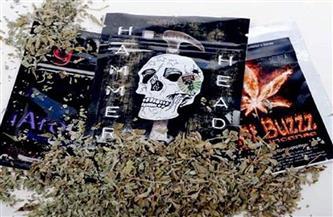 ضبط عاطلين بحوزتهما 5 كيلو من مخدر الشادو وأسلحة نارية بالقليوبية