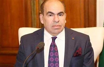 عضو بمجلس الشيوخ: مصر تسير على خطى التنمية وبناء الإنسان المصري وفقا لإستراتيجية 2030