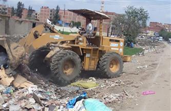 رفع 350 طن قمامة ومخلفات وتمهيد الطرق الفرعية في المحلة الكبرى