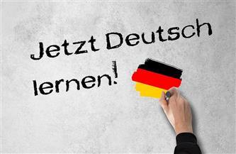 وزراء خارجية الدول الخمس الناطقة بالألمانية يبحثون التعاون لمواجهة جائحة كورونا