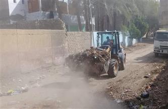 رفع 150 طن قمامة ومخلفات في حملات نظافة مشتركة بقرى المحلة الكبرى