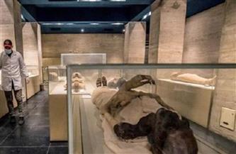 متحف الحضارة: ممنوع التصوير داخل قاعة المومياوات الملكية بالمتحف