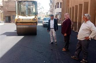 رصف شوارع بمدينة طهطا بتكلفة 4 ملايين جنيه | صور