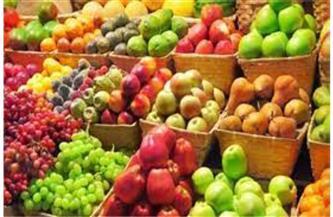 انخفاض الليمون والتفاح المصري يبدأ من 9 جنيهات.. أسعار الفاكهة اليوم الأربعاء 5 مايو 2021